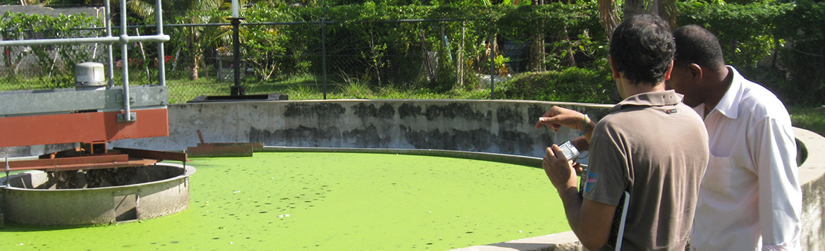 Enhancing Jamaica's Creditworthiness to Ensure Effective Wastewater Management